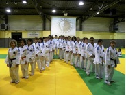 Sport associations/Judo groupe